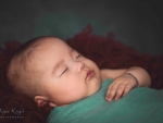 Newborn Photography0001