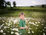 daisies ss tp wm