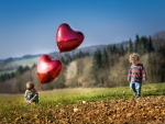 Heart Balloons in Field