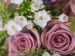 Burford Wedding Photography2 web